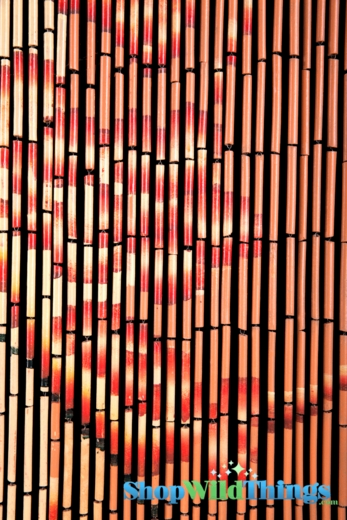 Bamboo painted beaded curtain with bamboo trees on orange background