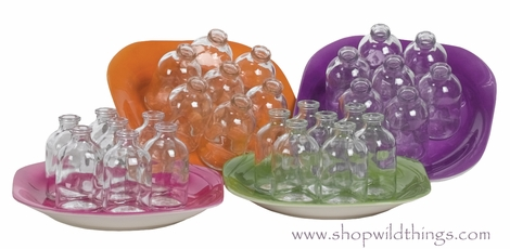 Clear Glass Bottles on Colorful Plates - 4 Colors Available (cutest things ever)