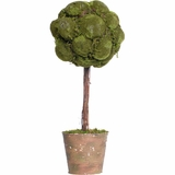 "CLEARANCE - 20"" Moss Topiary in Pot"