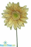 "CLEARANCE-Designer Gerber Daisy - Honey, 27"" x 11.5"""