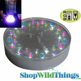 "E-Maxi 6"" Diameter w/ 32 RGB Color Changing LED's - Remote Control & AC Adapter Compatible - Centerpiece Lighting -Point N' Party Series"
