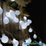 "String Lights - 50 Large Round LED Bulbs -  White ""Fairy Lights"""