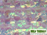 Floral Fabric Sheeting - Iridescent - 3 ft x 30 ft Roll