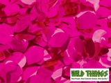 Floral Fabric Sheeting - Metallic Cerise (Pink) -  3' x 30' Roll