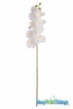 "Orchids - 42"" White - Tall Floral Design Spray - Phala Orchids"