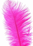 "Fuchsia Pink Ostrich Feathers 29""-32"" - SPADS"
