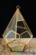 """Coming Soon - Geometric Hanging or Tabletop Terrarium & Candle Holder - Gold - 8"""" Tall - Dodecagon"""