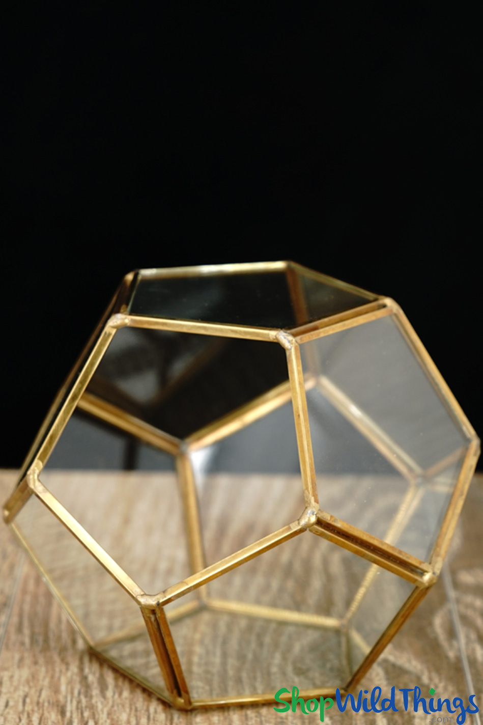 Coming Soon - Geometric Pentagon Terrarium & Candle Holder - Gold - 4 3/4""