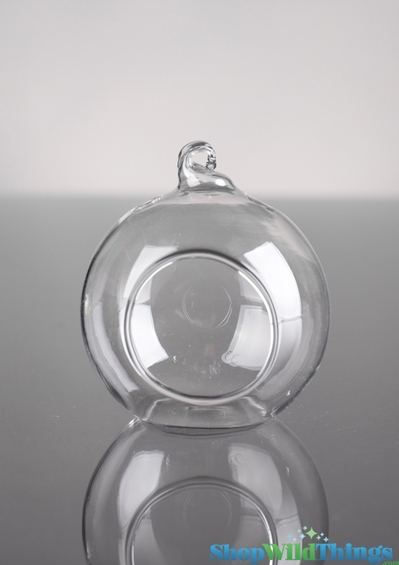 """Hanging (or Table Top) Round Glass Holder 2"""" Diameter"""