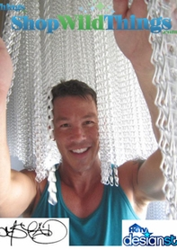 HGTV's David Bromstad - Chain Curtain Project Photos
