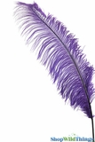"Lavender Feathers - 22"" - 32"" SPADS"