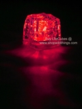 LED Ice Cube LiteCubes - Red Light - Flashing or Steady - Waterproof, Freezable
