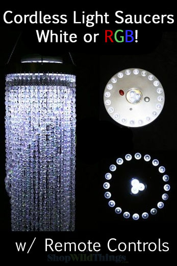 LED Light Discs - White & Color Changing