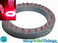 "Lyte Ring 6"" Diameter w/ 28 RGB Color Changing (Or Steady Various Colors) LED's - Remote Control Compatible - Point N' Party Series - For Downlighting"