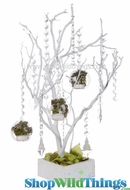 Natural Manzanita Tree in Wood Base - White - 2 Feet Tall