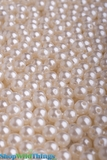 Pearls 10mm Ivory -  1lb Bag (approx 1000pcs) = 3 Cups
