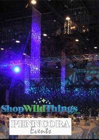 Penncora Special Events Designs - Big Beaded Curtain Installations