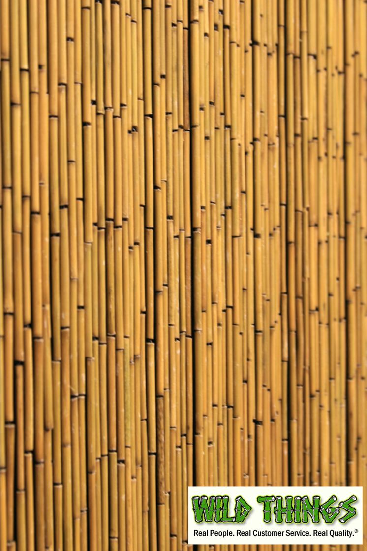 Bamboo Beaded Curtains Plain 135 Strands