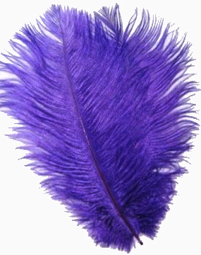 "Purple Ostrich Feathers 29""-32""- SPADS"