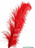 "Red Ostrich Feathers - 22"" - 32"" SPADS"