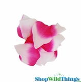 Silk Rose Petals - Fuchsia Pink & White - Bag of 300 pcs