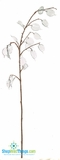 "Silver Dollar Floral Spray with CLEAR Beads! 36""  Tall"