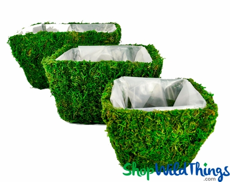 Clearance - Square Moss Covered Planters w/Liners, Set of 3 Sizes