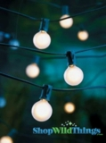 String Light - 25 Globe Lights - Frosted Bulbs