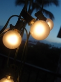 String Light - 25 Globe Bistro Lights - Frosted Bulbs - Works With Paper Lanterns!
