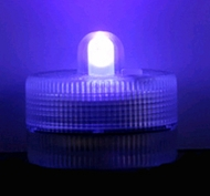 Submersible Floralyte Purple UV - Set of 10 - LED Lights