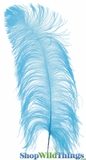 """Turquoise Blue Ostrich Feathers 13"""" - 15"""" - SPADS"""