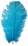 "Turquoise Ostrich Feathers 29""-32"" - SPADS"
