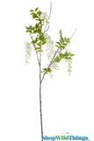 "Spray - Wisteria 50"" (4 Feet) - White Flowers"