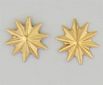 Pierced earrings gold asterisk