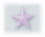 pierced earrings posted enameled Stainless Steel Star lavender