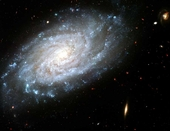 Dusty Spiral Galaxy
