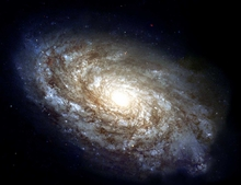 Majestic Spiral Galaxy