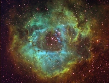 Narrow Band Rosette Nebula