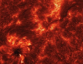 Spicules: Jets in the Sun