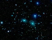 Spitzer Coma Cluster of Galaxies