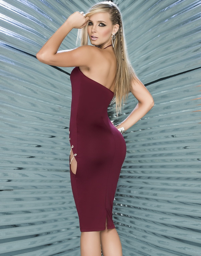 Bold & Beautiful Sexy Dress