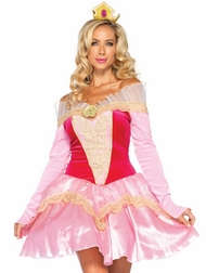 Disney Princess Aurora Costume