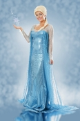Elsa Is The Queen Cosplay Costume