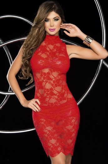 Erotic Tease Sexy Lace Mini Dress