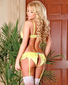 Exposed Summer Sexy Lace Bra & Garter Panty Set