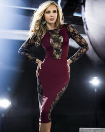 Hollywood Glam Sexy Knee Length Dress