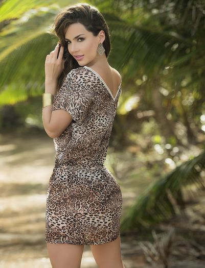 Lovely Leopard Sexy Cover Up Beach Dress