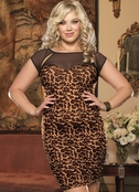 Plus Size Columbia Sexy Dress