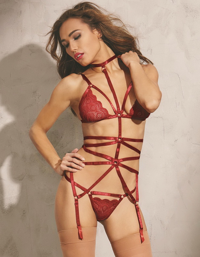 Red Diamond Garnet Day Dreams Bra & Garter Set