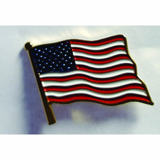 Brass US Flag Pins